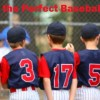 Building a Successful Batting Order